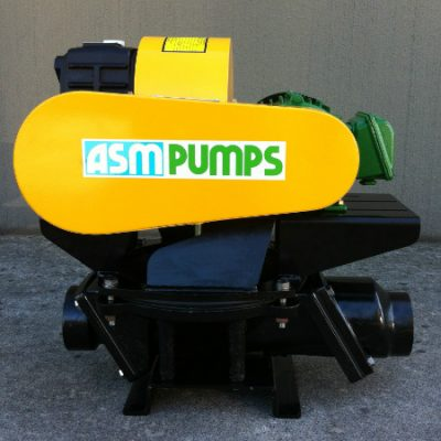 ASM Positive Displacement Diaphragm Pump